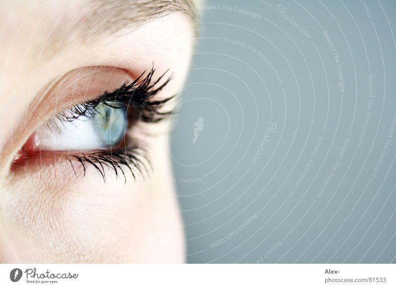 nur einen Augenblick, bitte.... Frau schön blau Gesicht Trauer Aussicht Wimpern Augenbraue Linse Durchblick Momentaufnahme Mensch Kontaktlinse Augenfarbe