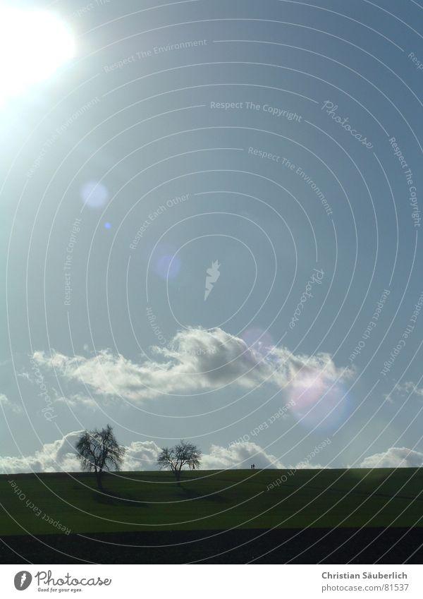 Sonnige Zeiten Himmel Baum Sonne Wiese Feld Spaziergang Sonntag