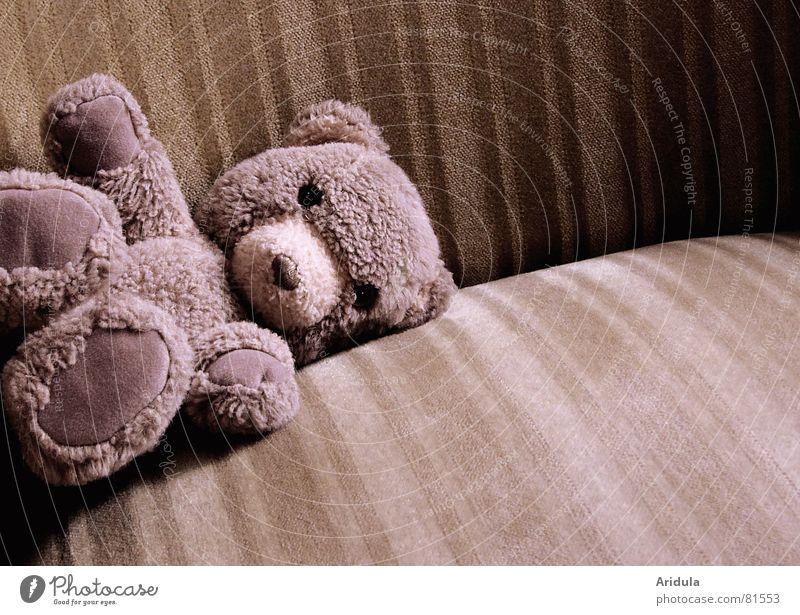 teddy_01 Spielzeug Sessel Fell Stoff beige Teddybär Einsamkeit poetisch Bär liegen alt Traurigkeit vergessen ausgestreckt Hilfesuchend Hilfsbedürftig einzeln