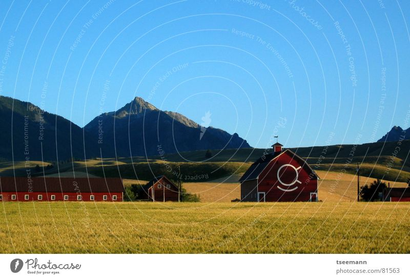 Idyllic Oregon II Himmel grün blau rot ruhig gelb Wiese Gras Berge u. Gebirge USA Idylle Hügel Amerika Scheune Wallowa Mountains