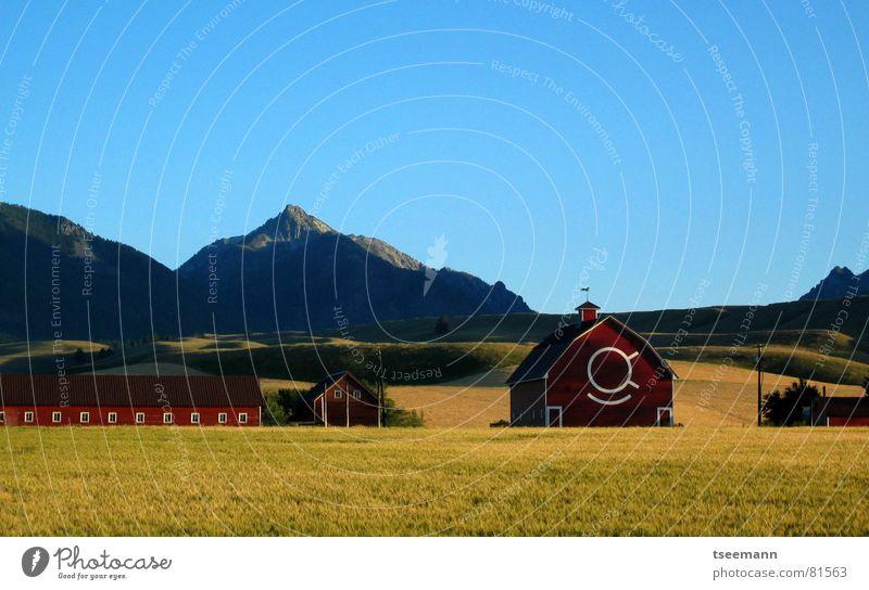 Idyllic Oregon II Hügel Wiese Gras grün rot Scheune USA Amerika Wallowa Mountains gelb Himmel ruhig Berge u. Gebirge blau Idylle barn grass america red barn