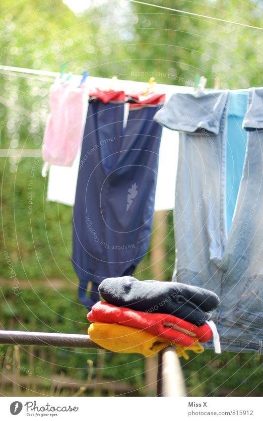 Fußball-Wäschemeister Garten Erfolg Sommer Bekleidung Hose Jeanshose Stoff frisch nass Sauberkeit Gefühle Glück Begeisterung Reinlichkeit Deutsche Flagge