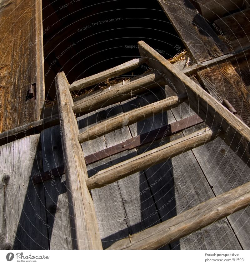 Heidi kletterte hinauf und langte auf dem Heuboden an... alt Holz Treppe Schweiz Bauernhof verfallen Amerika aufwärts Leiter Alm Luke Scheune Leitersprosse Landleben Oberland Heuschober