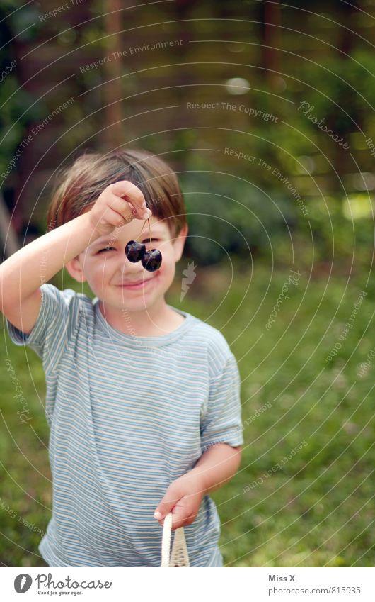 Kirschmaus Mensch Kind Sommer Gesunde Ernährung Gefühle Junge Glück Essen Garten Stimmung Frucht Kindheit Fröhlichkeit Lächeln genießen niedlich