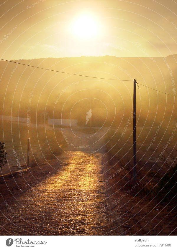 Abendsonne Sonne Einsamkeit Straße Wärme Landschaft braun orange Nebel Wetter Physik Strommast Abenddämmerung beige Portugal abgelegen schlechtes Wetter