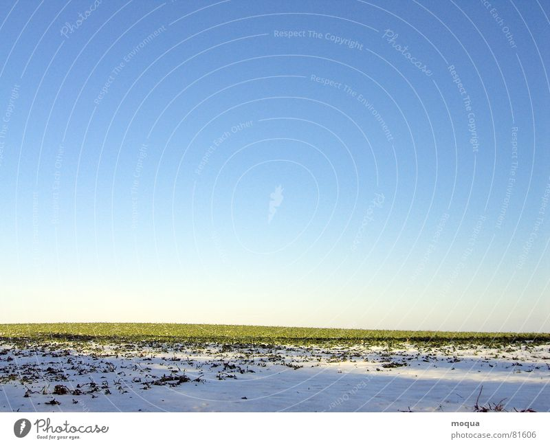 winteracker schön Himmel weiß Sonne grün blau Winter kalt Schnee Gras Frühling Feld Horizont Aussicht Spuren Hügel