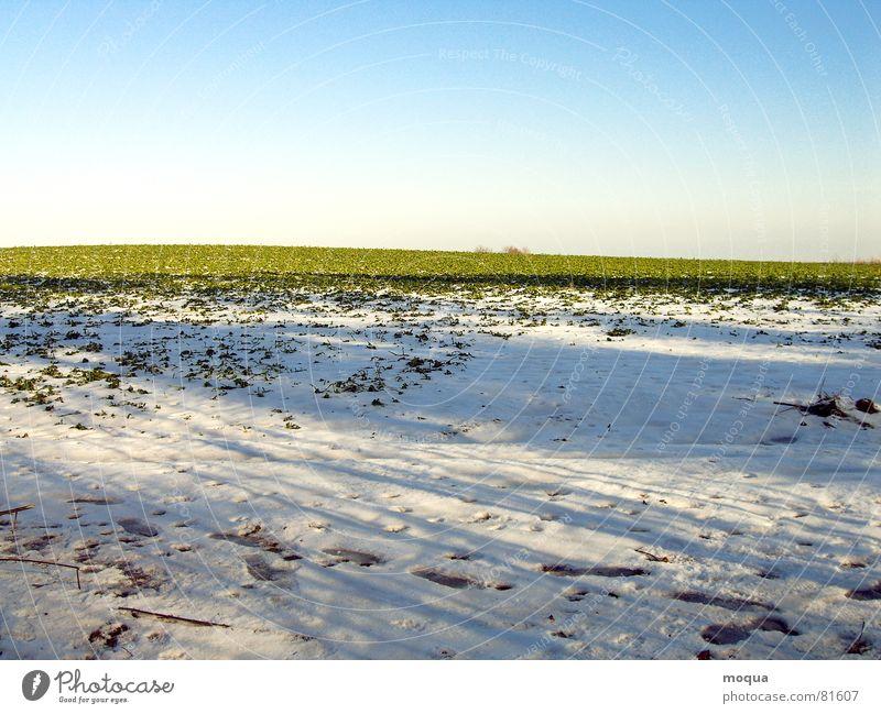 winteracker schön Himmel weiß Sonne grün blau Winter kalt Schnee Frühling Eis Feld Horizont Spuren Hügel Freundlichkeit