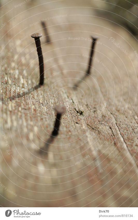 Auf den Kopf getroffen, alt rot schwarz grau Holz Zeit Garten braun Metall Freizeit & Hobby kaputt Vergänglichkeit Neigung Baustelle Rost lang