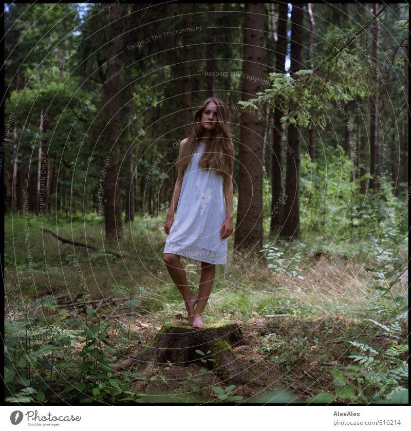 Abstumpfen Natur Jugendliche schön weiß Baum Junge Frau 18-30 Jahre Wald Erwachsene Gras natürlich Stimmung träumen Idylle frei stehen