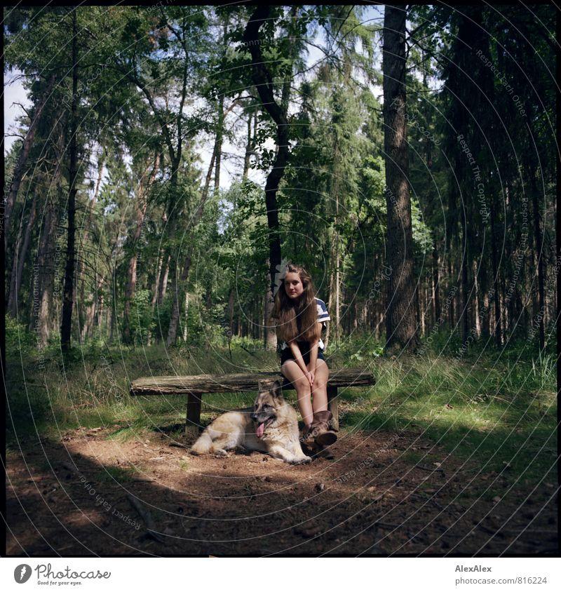 Waldspaziergang mit Hund Natur Jugendliche schön Baum Junge Frau Landschaft Tier 18-30 Jahre Erwachsene liegen Zusammensein Idylle sitzen frei wandern