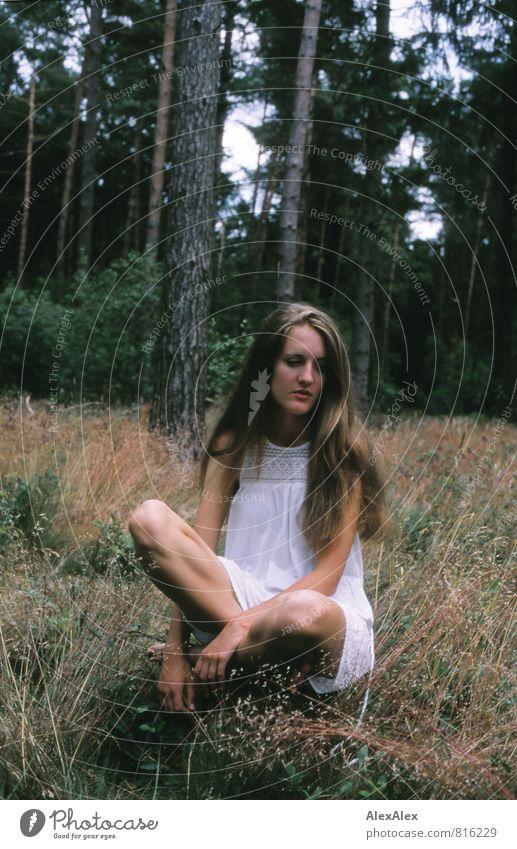 leise Junge Frau Jugendliche Körper 18-30 Jahre Erwachsene Schönes Wetter Baum Gras Sträucher Wald Waldlichtung Kleid brünett langhaarig hocken sitzen