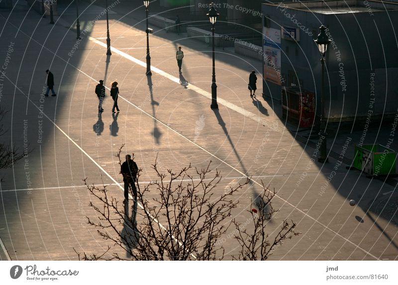 Strangers Mensch Stadt Sonne Einsamkeit ruhig Traurigkeit Herbst Denken Platz Lebewesen Verkehrswege Paris Frankreich bewegungslos herbstlich Bahnhof