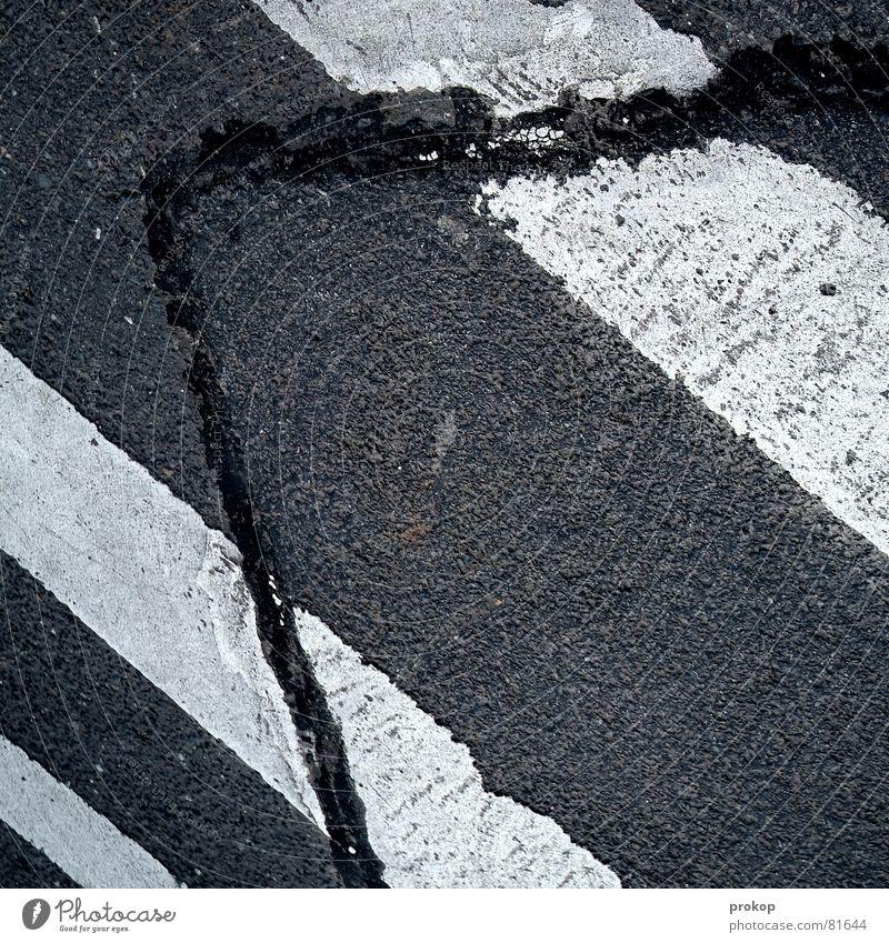 Freund in Not auferstehen Asphalt Fahrbahn Teer kaputt Streifen Zebrastreifen grau schwarz kratzig Fahrbahnmarkierung Fälschung repariert Geometrie roh