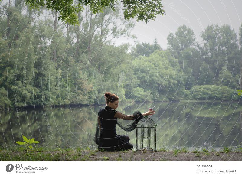 Shabby Chic Mensch Frau Himmel Natur Pflanze Wasser Baum Landschaft Ferne Umwelt Erwachsene Gefühle feminin Küste natürlich Freiheit