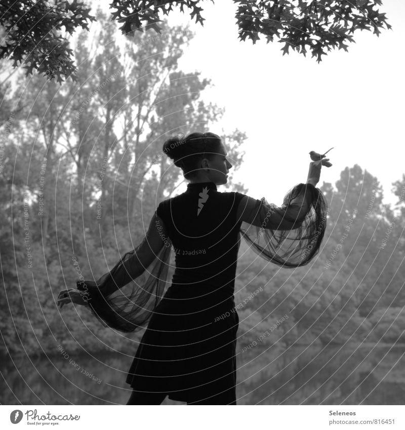 flieg Freiheit Mensch feminin Frau Erwachsene 1 Umwelt Natur Wolkenloser Himmel Pflanze Baum Sträucher Seeufer Teich Tier Vogel frei Gefühle Stimmung Akzeptanz