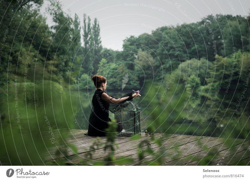 frei sein Ausflug Abenteuer Ferne Freiheit Mensch feminin Frau Erwachsene 1 Umwelt Natur Landschaft Pflanze Baum Sträucher Park Seeufer Flussufer Teich Vogel