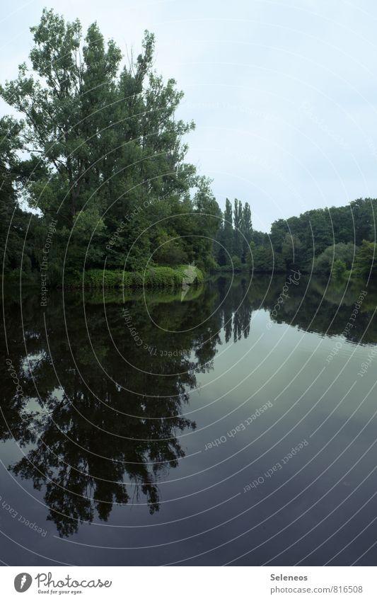 am See Ferien & Urlaub & Reisen Tourismus Sommer Umwelt Natur Landschaft Wasser Himmel Wolkenloser Himmel Horizont Baum Küste Seeufer Flussufer