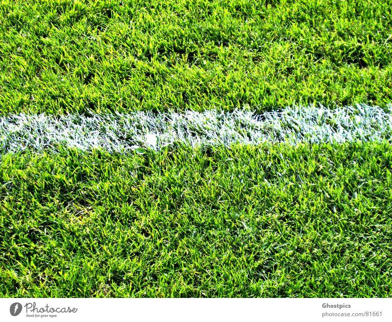 White-Stripe in der Landschaft grün Sommer Sport Spielen Linie Fußball Feld dreckig Ecke Schlamm
