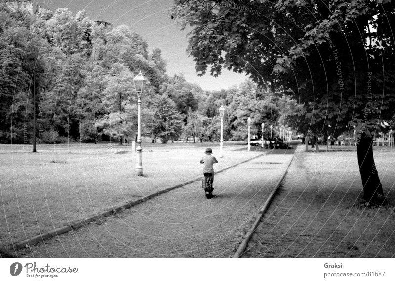 Day as dream Personenzug Park Sommer Länder Frieden infrared path suburban way infrared light dreaming pleasure ground outdoor sport Schwarzweißfoto tree heath