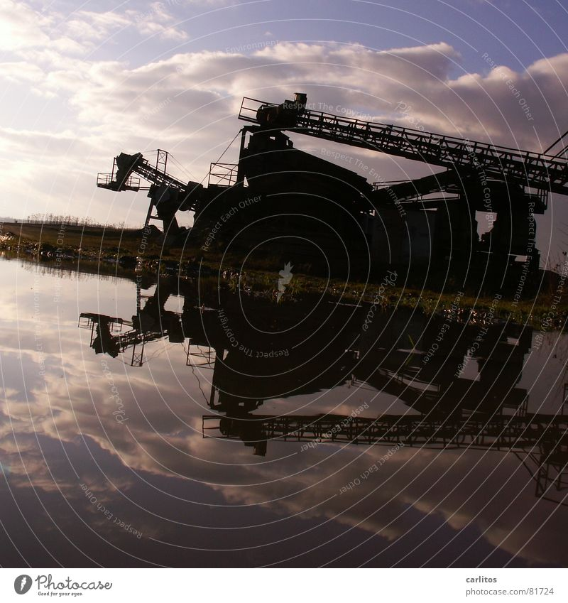 Monsterkatze vor Himmel Subvention Kiesgrube Förderband Pfütze Reflexion & Spiegelung Symmetrie Baustelle diagonal Neigung Arbeit & Erwerbstätigkeit Wasser
