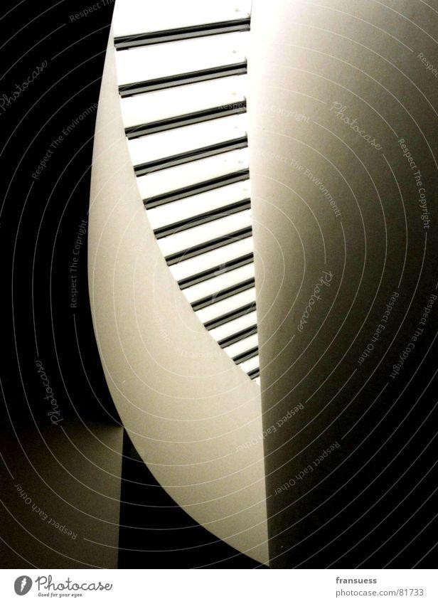 die geometrie des seins Linie hell Raum Wellen Glas Design Dach weich München Kurve Geometrie gekrümmt puristisch