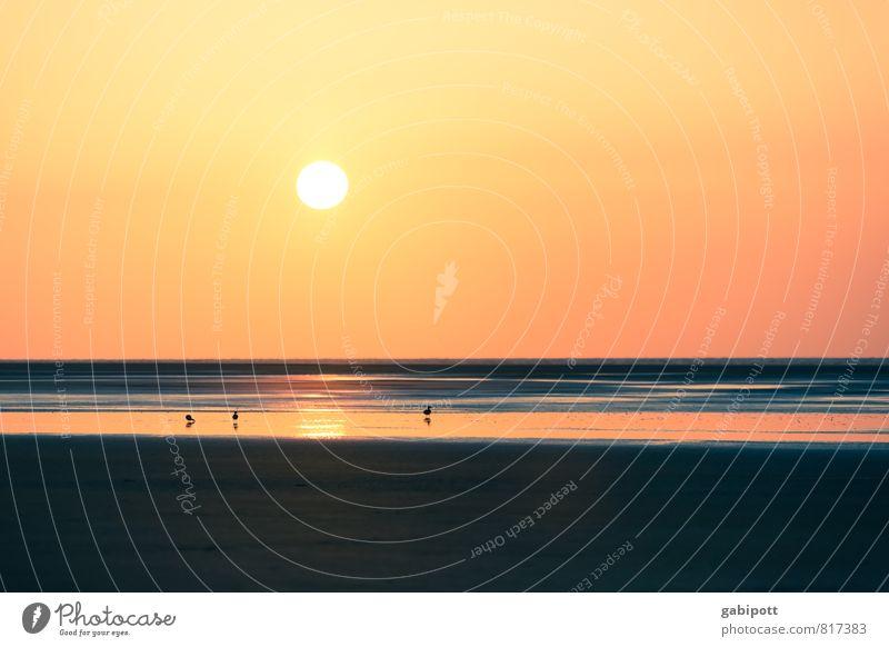 Strandfischer Ferien & Urlaub & Reisen Farbe Sommer Sonne Meer Erholung ruhig Ferne Freiheit Horizont Tourismus Zufriedenheit Lebensfreude Abenteuer Ewigkeit