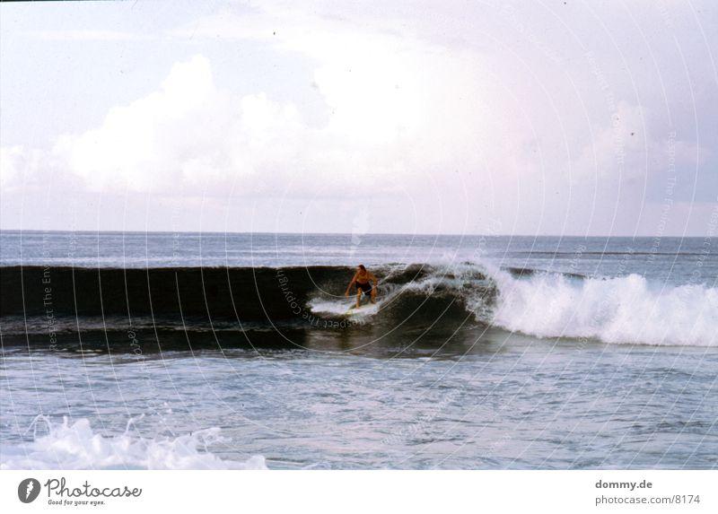 Surfer Wellen Wasser atmen fliegen Sri Lanka Farbfoto