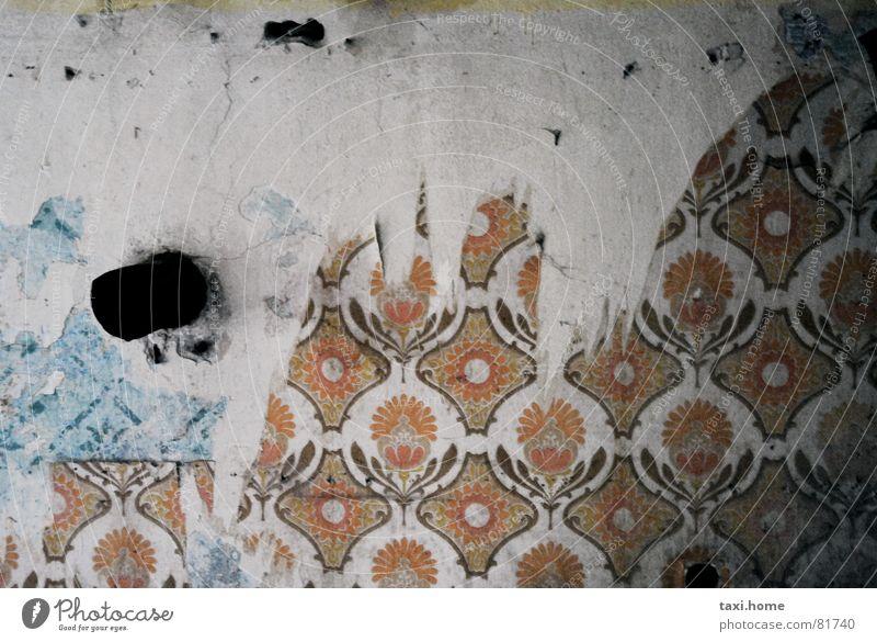 Tapetenwechsel Siebziger Jahre Muster Wand Armut Vergänglichkeit Trauer Verzweiflung abgefuckt sein kaputt sein zerissen musterabschnitt beschädigt