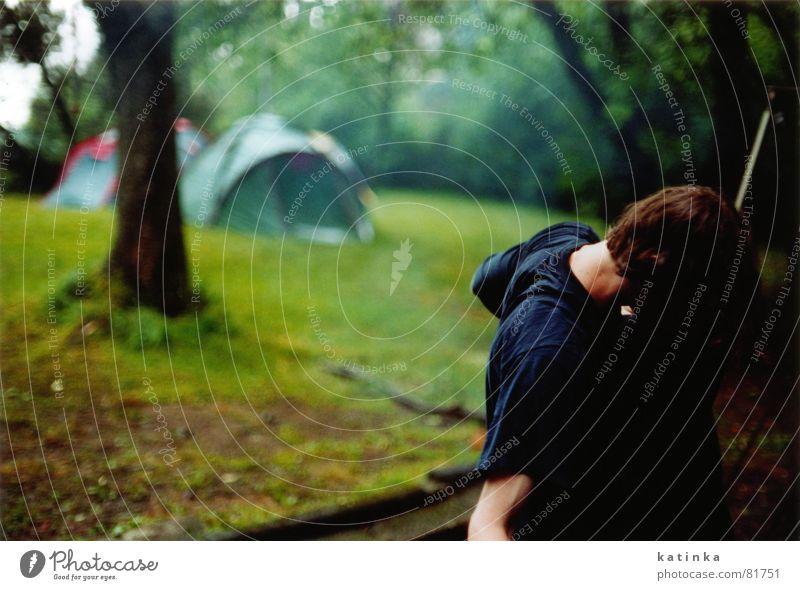 schönenbach 2 Baum grün Ferien & Urlaub & Reisen Wiese Freiheit Berge u. Gebirge Landschaft Gras Regen Park nass Ausflug Freizeit & Hobby fahren Rasen Regenschirm