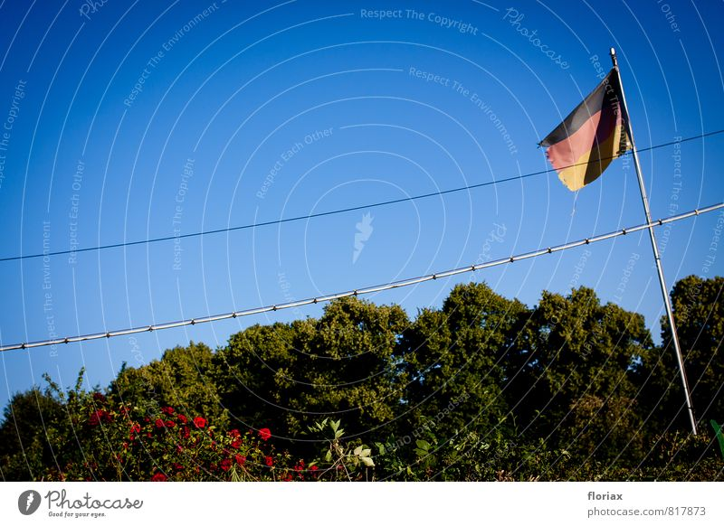 deutsches schrebergartenidyll I/II Natur blau Stadt grün Sommer Sonne Erholung rot schwarz Garten Stadtleben Zufriedenheit gold Fußball Schönes Wetter