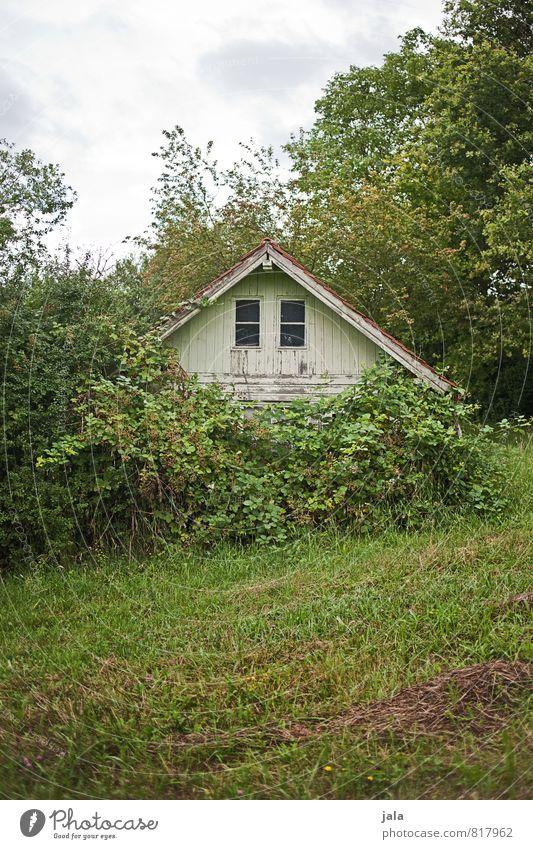 häusle Umwelt Natur Landschaft Pflanze Himmel Baum Gras Sträucher Grünpflanze Wildpflanze Garten Wiese Hütte Bauwerk Gebäude natürlich wild Farbfoto