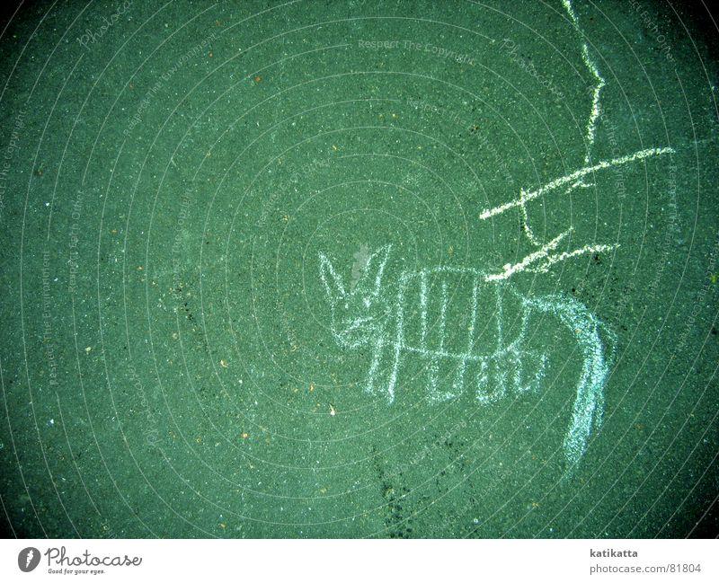abstrakte malerei Katze Hund grün Tier Farbe Straße Spielen Wege & Pfade Stein lustig Linie Kindheit süß Streifen niedlich Asphalt
