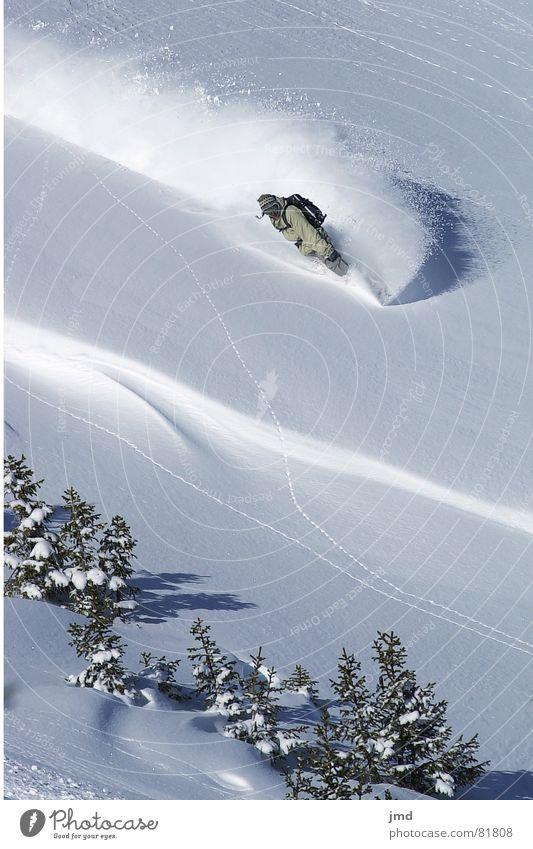 Wie im Himmel.. Jugendliche Freude Berge u. Gebirge Schnee Stil Sport Freizeit & Hobby Coolness Körperhaltung Kurve abwärts Schwung Wintersport Nadelbaum Freestyle Spray