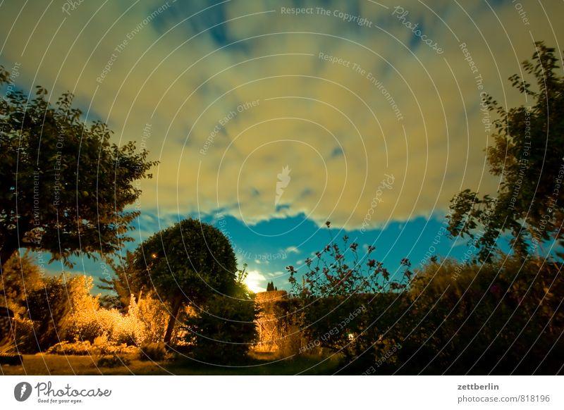 Mondaufgang Garten Schrebergarten Sommer Nacht dunkel Himmel Nachthimmel Wolken Licht Mondschein Vollmond Baum Sträucher Wiese Textfreiraum Abenteuer Märchen