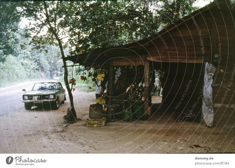 Sri Lanka Car Station Haus Hütte PKW alt Frucht stehen sri lanka