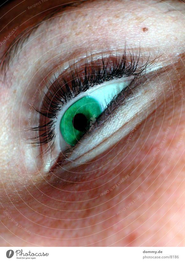 greenEye grün Auge feminin Wimpern Kontaktlinse