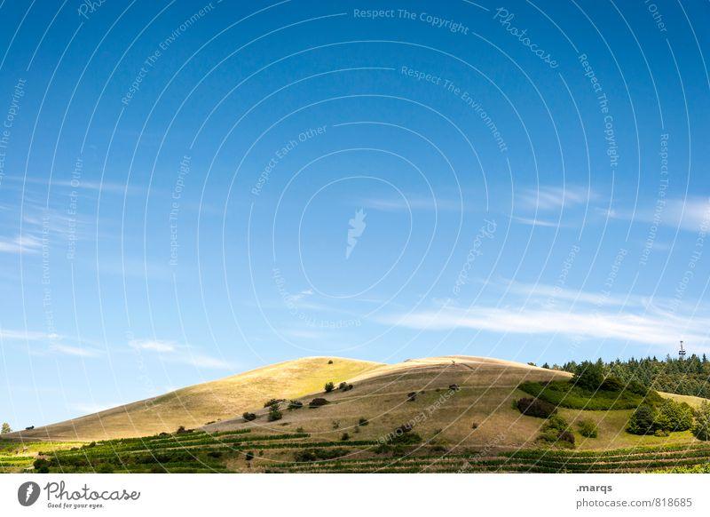 Badberg Tourismus Ausflug Sommer Umwelt Natur Landschaft Himmel Schönes Wetter Sträucher Wiese Hügel ästhetisch natürlich schön Farbe Kaiserstuhl Farbfoto