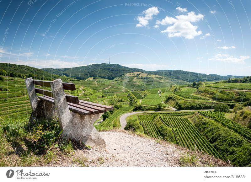 Kaiserwetter Tourismus Ausflug wandern Natur Landschaft Himmel Horizont Sommer Herbst Schönes Wetter Hügel Feld Weinberg Weinbau Bank Zeichen schön Stimmung