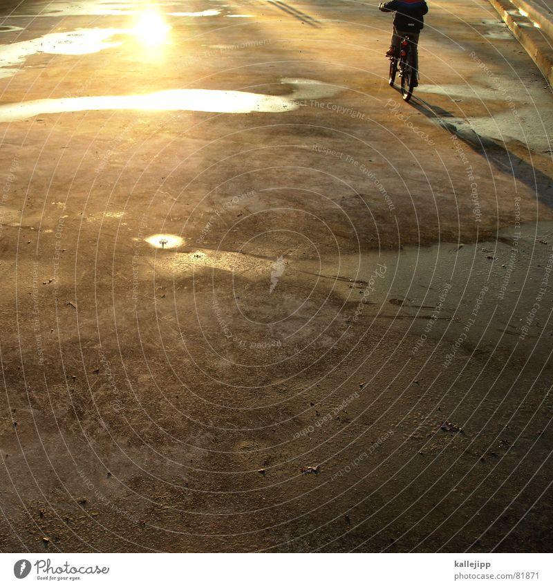 spielfläche 16 x 16 Kinderfahrrad See Pfütze Format Spielplatz Spielen Gegenlicht Reflexion & Spiegelung Garten Park verdursten Dürre fahrad boing fahradfahren