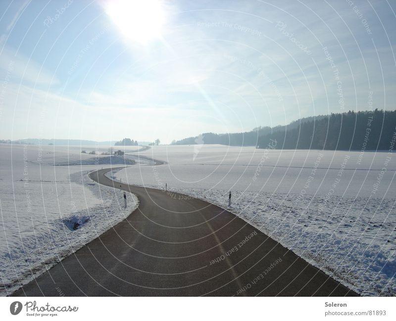 Icetrack Himmel Natur blau Baum Einsamkeit Landschaft Ferne Winter Wald kalt Traurigkeit Straße Schnee Freiheit Eis Verkehr