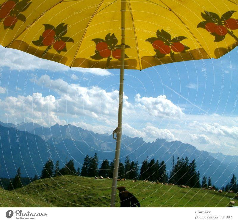 Bluna und der Himmel blau grün Baum Wolken Wald gelb Wiese Berge u. Gebirge Gras wandern Niveau Alpen Klettern Regenschirm Weide