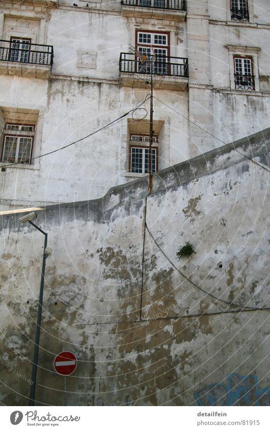 Einbahnstraße alt grün Pflanze rot Fenster Tod Graffiti Wand Gras Architektur Wege & Pfade grau Mauer Stein Gebäude Tür