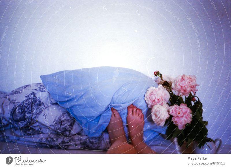 Füße hochlegen Leben Beine Fuß nackt natürlich Gelassenheit geduldig ruhig Barfuß Pause Pfingstrose Bettwäsche schlafen Frühlingsgefühle Bettdecke Duft träumen