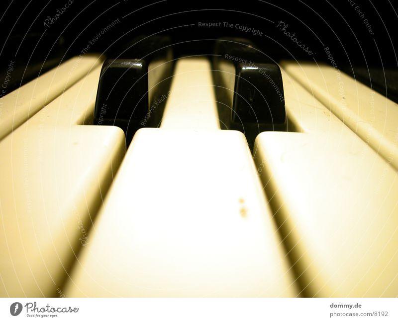 Orgel weiß schwarz Spielen berühren