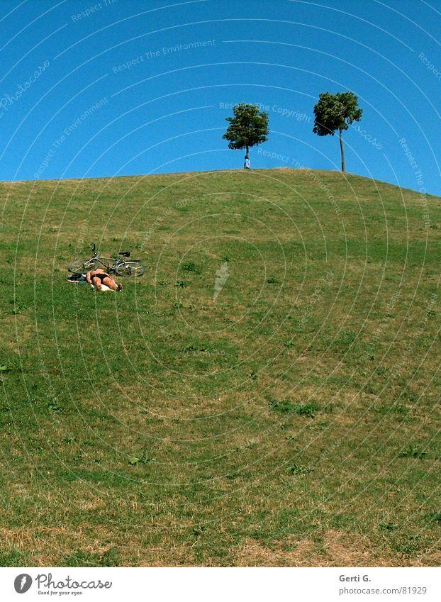 übern Berg Mensch Natur Baum Sommer Freude Erholung Wiese Berge u. Gebirge 2 Feste & Feiern liegen Platz paarweise Rasen Idylle Hügel