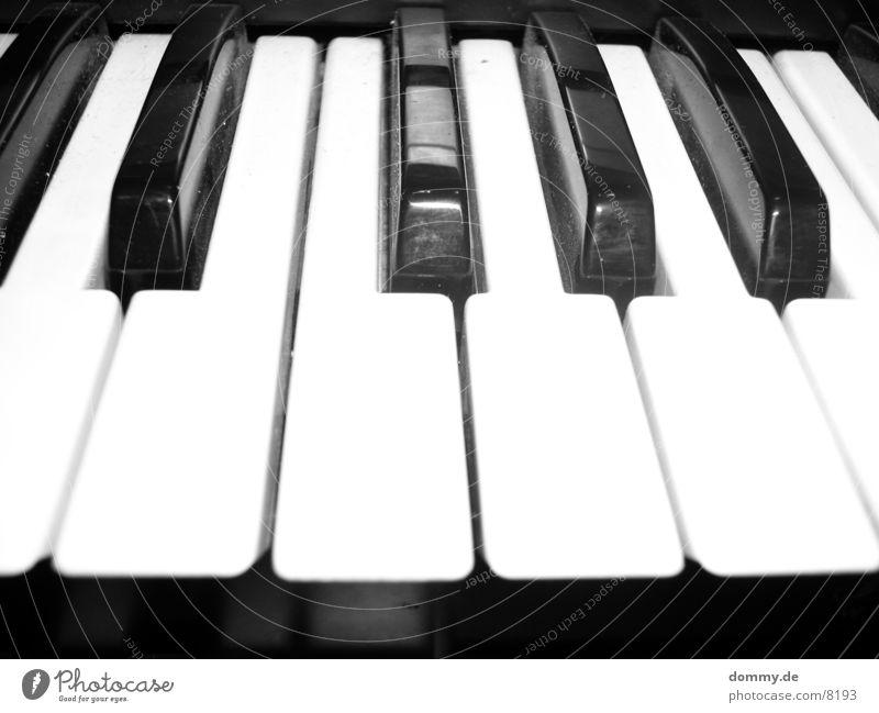 Orgel (S/W Version) schwarz weiß Spielen Makroaufnahme Nahaufnahme berühren