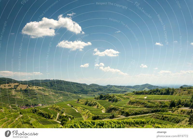 Terrassen Ferien & Urlaub & Reisen Tourismus Ausflug Sommer wandern Natur Landschaft Himmel Wolken Horizont Schönes Wetter Feld Weinberg Weinbau Terrassenfelder