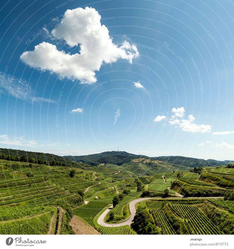 U Ausflug Umwelt Natur Landschaft Himmel Wolken Horizont Sommer Herbst Schönes Wetter Weinberg Weinbau Weingut Verkehrswege Straße Kurve Erholung schön Idylle