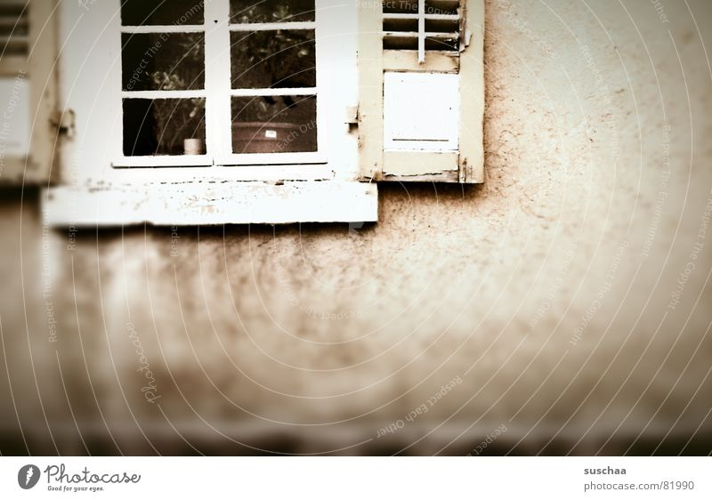 .. kein durchblick wieder heute Haus dunkel Fenster Wand Traurigkeit Gebäude Fassade trist verfallen Fensterscheibe Blumentopf Fensterladen Durchblick Villa Fensterbrett Splitter