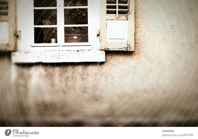.. kein durchblick wieder heute Haus dunkel Fenster Wand Traurigkeit Gebäude Fassade trist verfallen Fensterscheibe Blumentopf Fensterladen Durchblick Villa